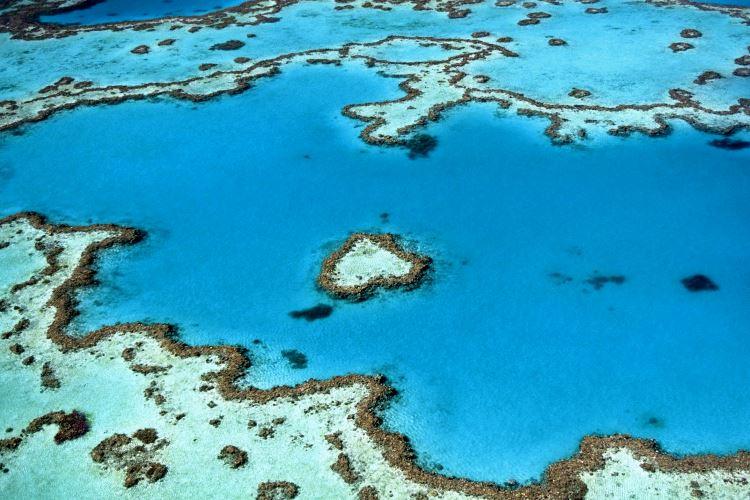 Spot de plongée sous-marine